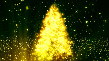 prezentaci : Abstract Christmas Tree 2 Loopable Background, A Full HD, 1920x1080 Pixels, seamlessly looped animation,  High Quality Quicktime Loopable animation works with all Editing Programs,  Simply Loop it for any duration Dostupné videozáznamy