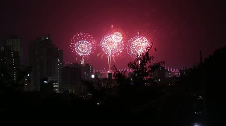 best of : Busan Fireworks Festival