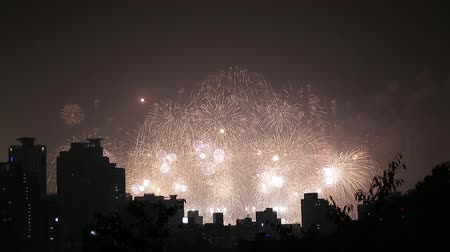 Fireworks Festival in the City