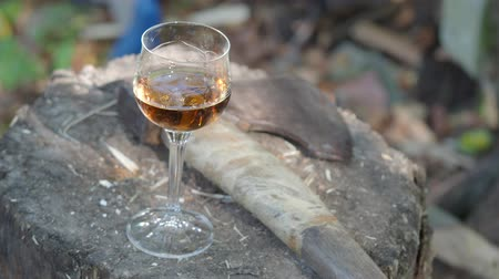 топор : glass of cognac and an ax on a wooden deck on the backyard of the country house Стоковые видеозаписи