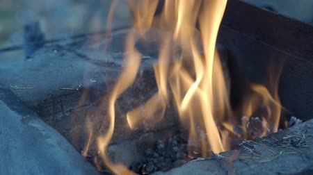 firebox : burning wood during heating