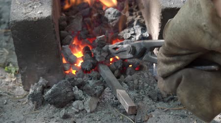 heating up metal : iron rod are heating in burning coals before forging in rural smithy