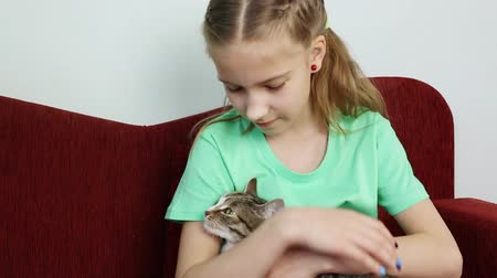 allergen : The girl strokes the gray cat sitting on her hands
