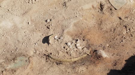 taş ocağı : The work of the archaeologist at the excavation of the finds of the small size