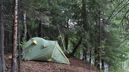 gumka : Tent installed on the shore of the Siberian taiga river Wideo