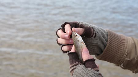 Ко : A bum caught a small fish by the bait, but it unexpectedly slips out of its hands. Стоковые видеозаписи