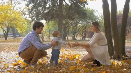 paternal : Slow motion footage of parents encouraging baby son to make first steps at autumn park