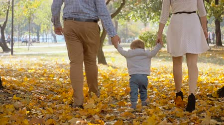 paternal : Slow motion footage of parents holding baby by hands and walking at autumn park Stock Footage
