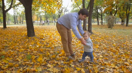 segítség : Slow motion footage of young carin father teaching his baby son first steps at autumn park