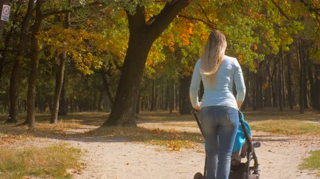 толчок : 4K footage of beautiful young mother walking with baby pram under tree with falling leaves Стоковые видеозаписи