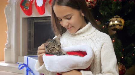koťátko : Portrait of beautiful teenage girl caressing cute kitten sitting in Santa cap next to Christmas tree