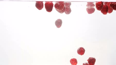 vörösáfonya : Closeup 4k video of fresh ripe raspberries floating in water against white backgorund