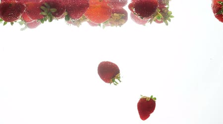 malina : Closeup footage of red ripe raspberries slowly floating in water against white background