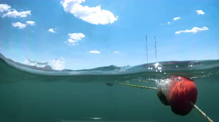 4k video from under the water on life buoys and moored yachts at see Vídeos