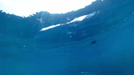 Slow motion underwater video of waving sea and life buoys at bright sunny day Vídeos
