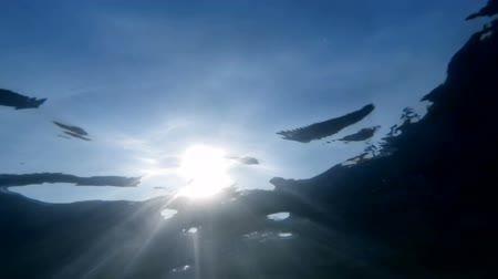 Slow motion underwater video of sun light rays shining through calm sea water surface