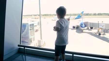 Rear view 4k footage of little toddler boy standing at airport terminal and looking at jet airplanes through big window