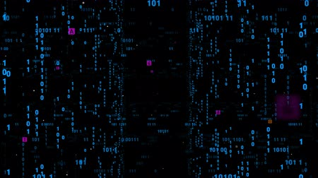 versiyon : Digital fly binary code background loop. Data binary code network. 4K loop animation. Blue version. Stok Video