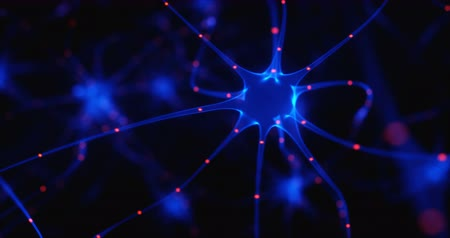 Interconnected neurons with electrical pulses. Wideo