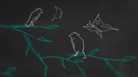 устойчивость : Ecosystem Chalk Animation on blackboard Стоковые видеозаписи