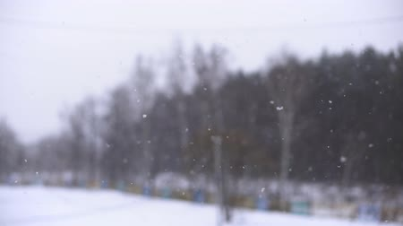 snow flurry : Snow. Falling snowflakes with selective focus. Winter design concept. Stock Footage