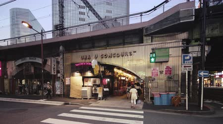 век : Tokyo, Japan - August 25, 2019: Concourse Yuraku under the Yurakucho station. There are noodle stalls and sake bars with old posters glued to the walls of tunnel.