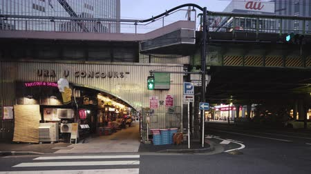 sierpien : Tokyo, Japan - August 25, 2019: Concourse Yuraku under the Yurakucho station. There are noodle stalls and sake bars with old posters glued to the walls of tunnel.