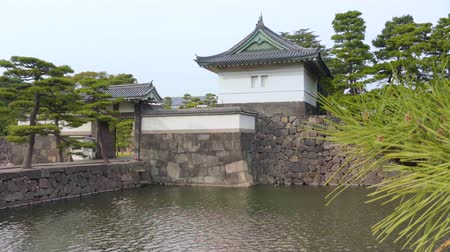 сложить : Pan video of pine trees along the moat of the Tokyo Imperial Palace.