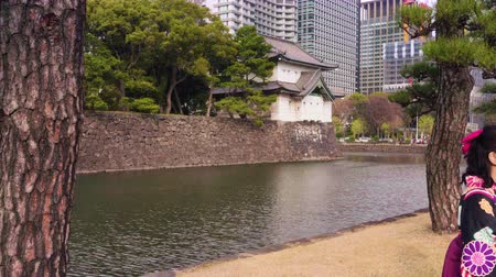 Tokyo, Japan - March 01 2020: Pan video of a young Japanese woman in kimono under the pine trees along the moat of the Tokyo Imperial Palace.