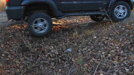 boldness : SUV drives through a ditch in the woods Stock Footage