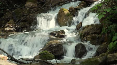 strumień : Clean fresh water of a forest stream running over rocks Wideo