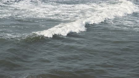 goa beach : Waves touching sandy beach at sunny day