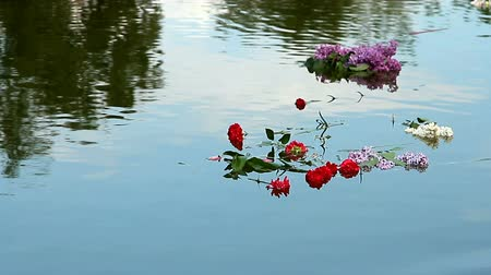 запомнить : Bouquets of carnations and lilacs floating on the water Стоковые видеозаписи