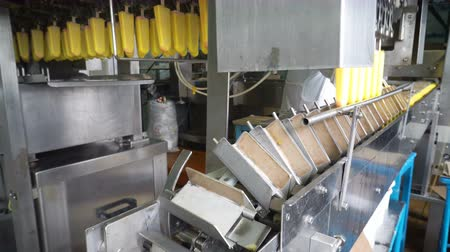 eskimo : The conveyor automatic lines for the production of ice cream Stock Footage