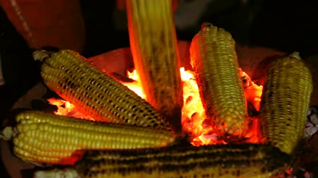 kernel : Roasted corn on the coals in the dark closeup