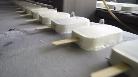 emtia : The conveyor automatic lines for the production of ice cream Stok Video