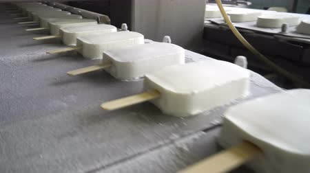 eskimos : The conveyor automatic lines for the production of ice cream Wideo