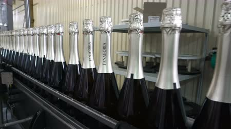 champagne bottles : Sennoy, Russian Federation – February 15, 2018: The line for filling and sealing the conveyor in a factory of champagne