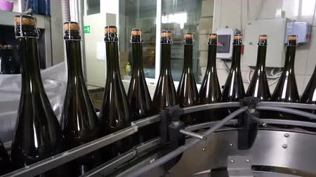 pezsgő : Sennoy, Russian Federation – February 15, 2018: Bottling and sealing conveyor line at winery factory Stock mozgókép