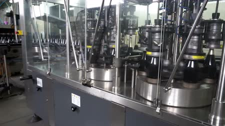 лоза : Bottling and sealing conveyor line at winery factory Стоковые видеозаписи