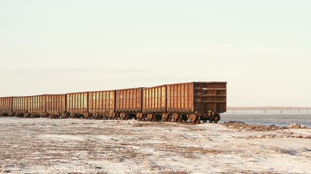 enferrujado : Old rusty train wagons with stalactites of salt at the lake