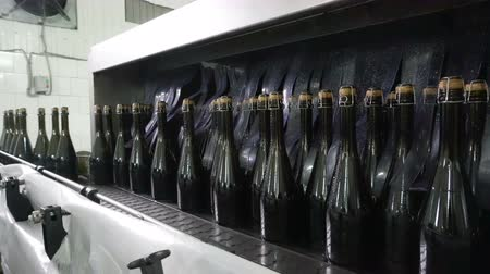 шампанское : Washing line for bottles and bottling of champagne conveyor at the factory