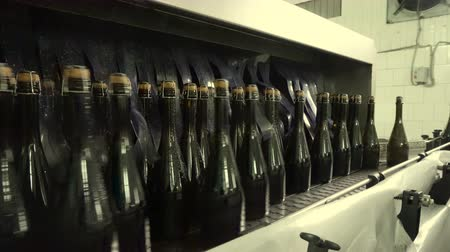 champagne bottles : Washing line for bottles and bottling of champagne conveyor at the factory