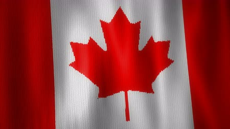 canadense : Beautiful animation of knitted Canadian flag moving in the wind. Seamless loop background.