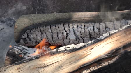 Burning Wooden Logs In Fireplace.