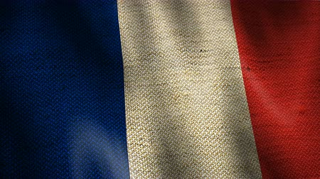 Beautiful animation of France gunny sack flag moving in the wind. Seamless loop background. Vídeos