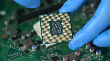 chipset : CPU in hand before installation into the motherboard Stock Footage