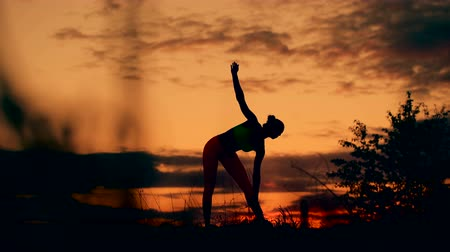 exercícios : Slender young woman doing fitness exercises in the warm-up at sunset. Flexible shape, smooth motion.