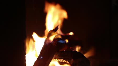 superior : Burning camping fire in the night dark background
