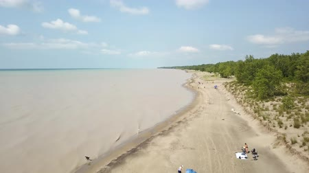 superior : Lake Erie, beach and turbid water after storm. Aerial view. 4k Vídeos